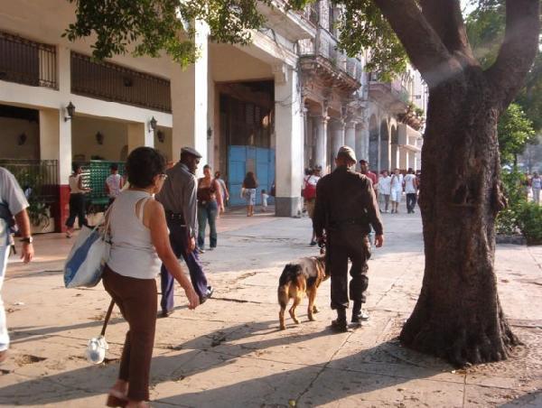 Ignorance about Cuba...
