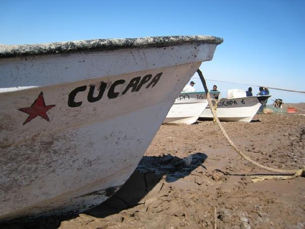 cucapa fishing 6...